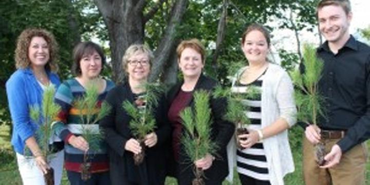 La SADC de Baie-des-Chaleurs plante 97 arbres pour compenser ses GES